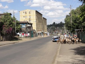 Travelling for Fun, visit Ethiopia, Addis Ababa: Busy traffic in Addis!