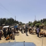 Travelling for Fun, Simien Mountains, visit Ethiopia: Debark town on market day outside the park