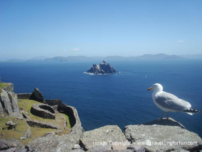 No Springers yet from the Bandon - Fishing in Ireland - Catch