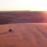 Visit Morocco, things to do in Merzouga, Erg Chebbi, Sahara Desert, Travelling for Fun: A scarab beetle casts a big shadow on the sand dunes at dawn in Merzouga as the sun covers the desert in an orange blanket.