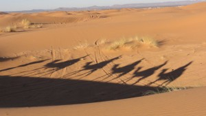 Visit Morocco, things to do in Merzouga, Erg Chebbi, Sahara Desert, Travelling for Fun: A camel caravan casts a shadow on the sand dunes early in the morning in Merzouga. Camel rides and an overnight stay in the dunes are popular things to do.