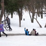 Maxim Gorky Park, What to do in Rostov on Don, Russia, Travelling for Fun: Kids have good fun in the park sliding down the ice on their ass. Their mothers won't be pleased with the new replacement jeans they have to buy!