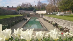 Garden of Remembrance, Free attractions in Dublin, Ireland, What to do in Dublin, Travelling for Fun: The Garden of Remembrance to remember the people who died for Irish Independence over tulips on a sunny day