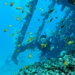 What to do in Jeddah, Wreck Dive, Travelling for Fun: Me coming scuba diving through part of a wreck